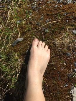 pied sur la terre