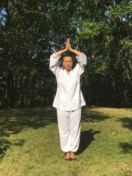 Qi Gong posture